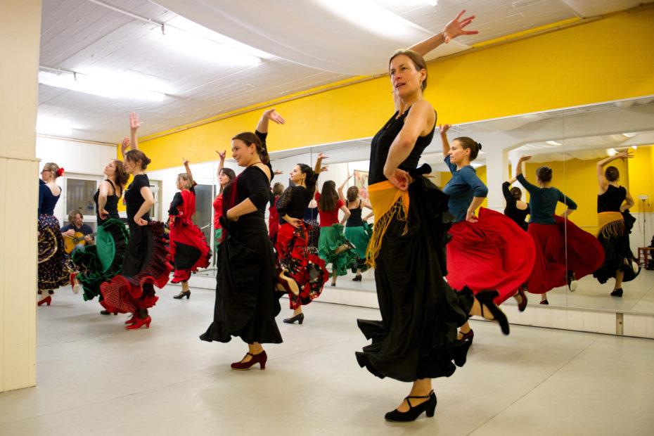 Flamenco Erwachsene