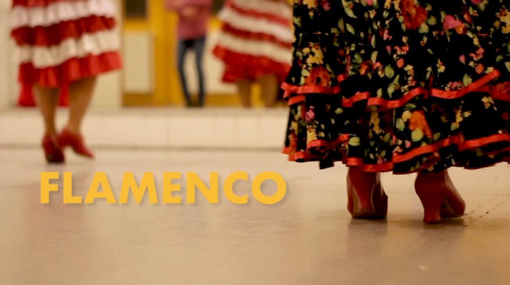 Trailer Flamencounterricht