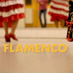 Flamenco Onlinekurs Anfänger