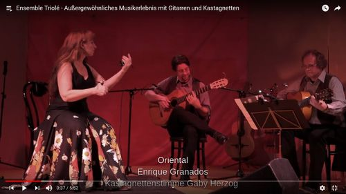 Trailer Ensemble Triole